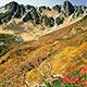 絶景。黄金色に輝く秋の千畳敷カール
