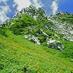 駒ヶ岳ロープ—ウェイ 夏の最盛期